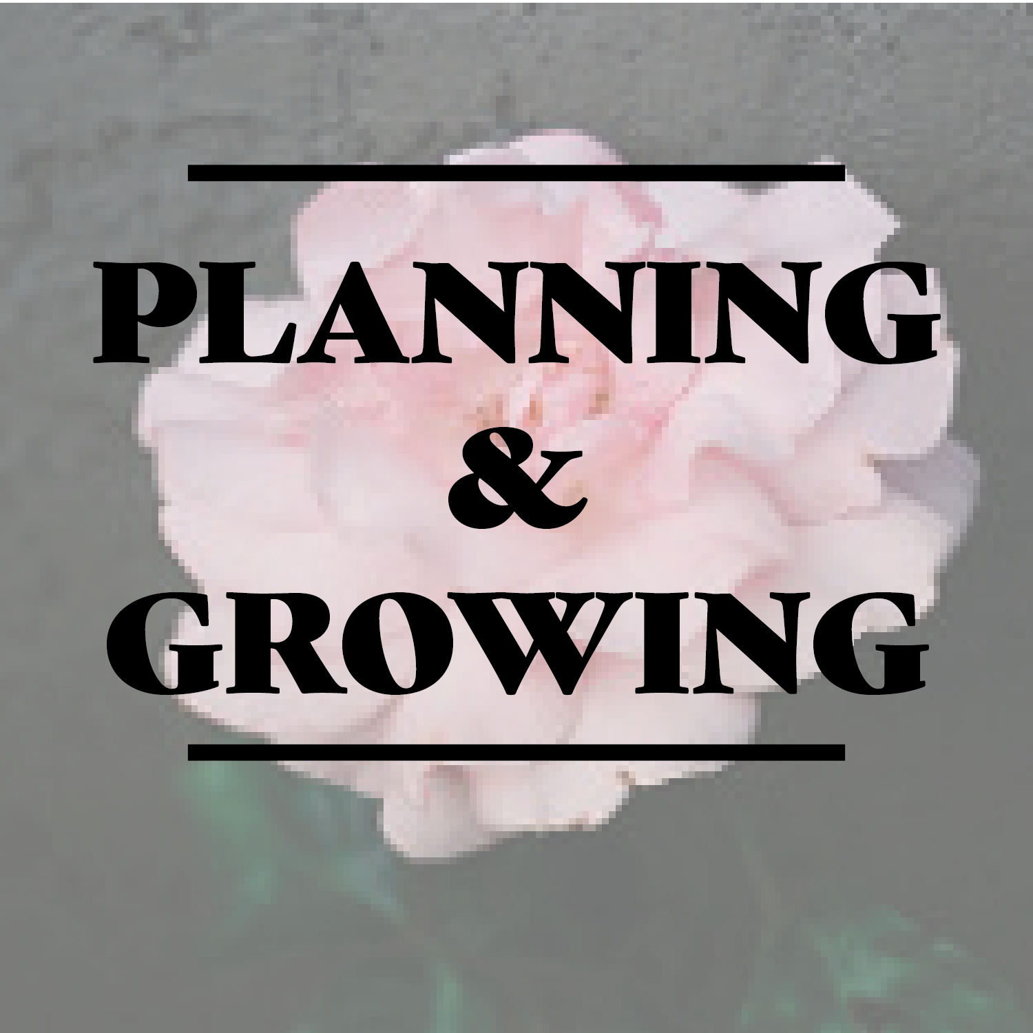 Planning and Growing Image